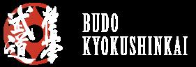 Budo Kyokushinkai